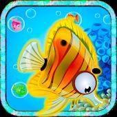 Fish Match Quest Blitz Kids