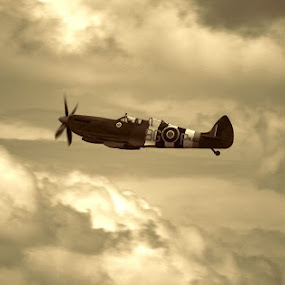 Spitfire by Carl Kennedy - Transportation Airplanes ( clouds, flying, spitfire, rare, 2seater, trainer )
