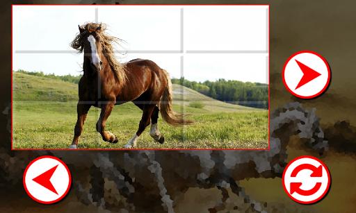 美丽的马拼图