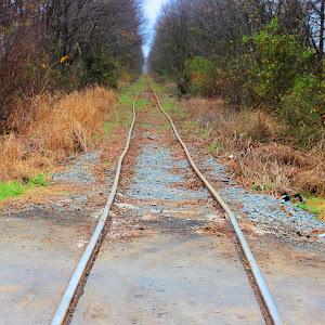 Delta tracks.jpg