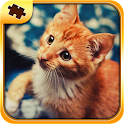 Cat Puzzles - Jigsaw icon