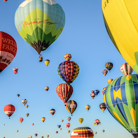 Albuquerque Balloon Fiesta by Mike Moss - Transportation Other