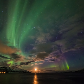 Moon by Geir Hammer - Landscapes Starscapes ( water, sand, sky, purple, green, aurora, star, sea, beach, north, northen light, norway,  )