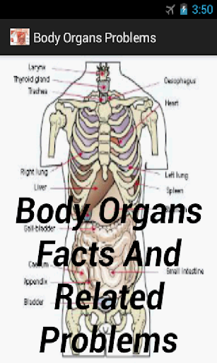 Body Organs Facts