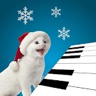3D Singing Kitten Cat Piano icon