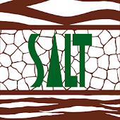 SALT Employee Benefits