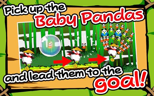 The Panda Acrobat Group