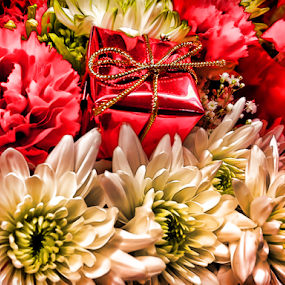 Floral Bouquet by Lawrence Ferreira - Flowers Flower Arangements ( festive, white flower, red flower, carnations, lovely, chrysanthemum, mums, flowers, cheerful, floral,  )