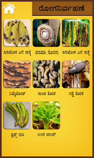 Banana kannada- screenshot thumbnail