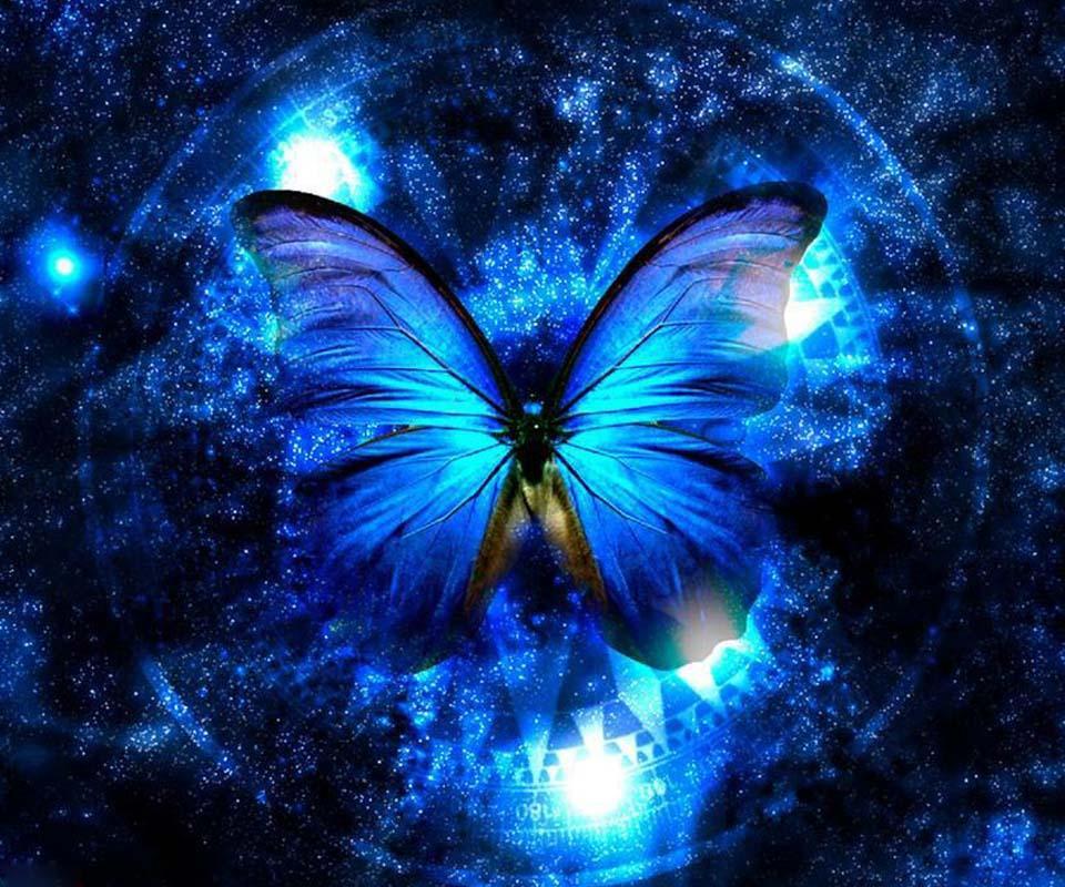 Обезьяна, картинки на телефон красивые и крутые бабочки