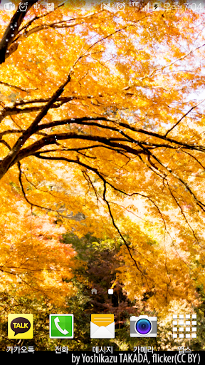 玩免費娛樂APP|下載autumn yellow livewallpaper app不用錢|硬是要APP