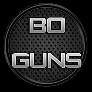 BO Guns for PC and MAC