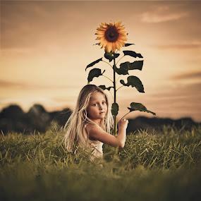 In my garden by Jan Kraft - Babies & Children Child Portraits ( field, girls, sky, nature, sunset, flover, bloom, hair, eyes )