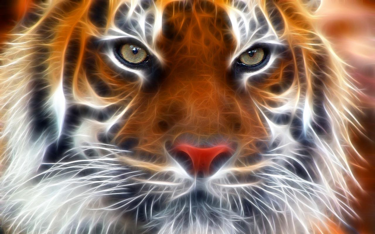3D Tigers  Android Apps On Google Play