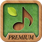 Sound Massage Premium icon
