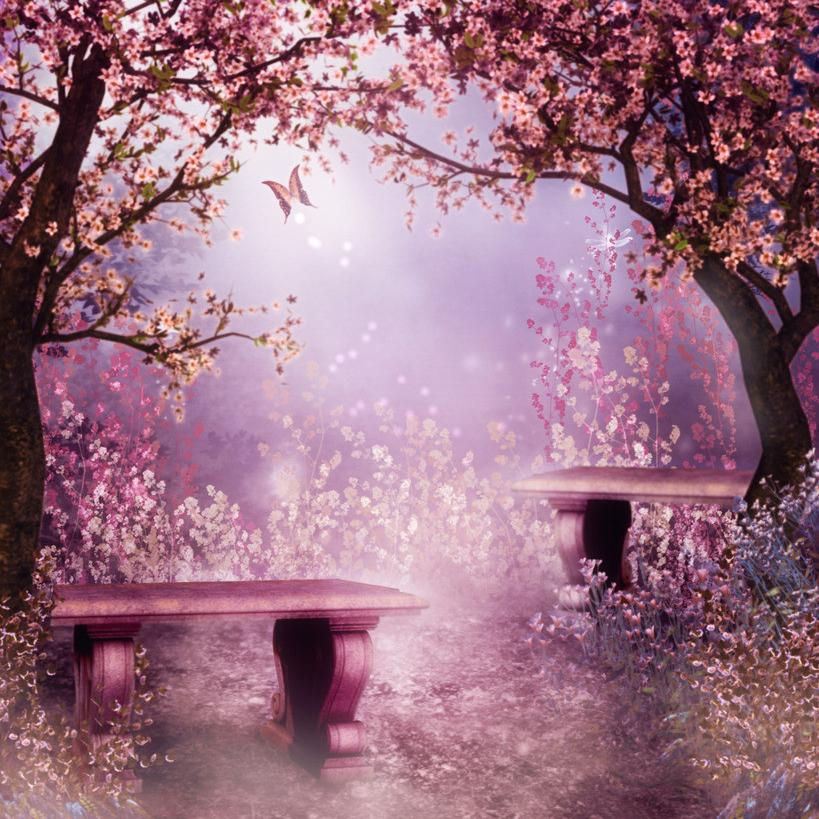 cherry blossom live wallpaper iphone