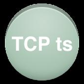 TCP Testsuite