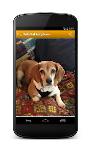 Fido Pet Adoptions Pro - screenshot thumbnail