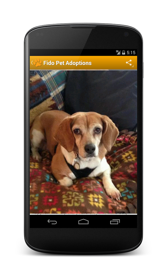 Fido Pet Adoptions Pro - screenshot