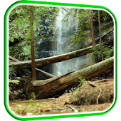 Waterfall in Forest LWP