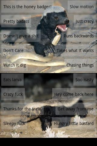 Honey Badger Soundboard - screenshot