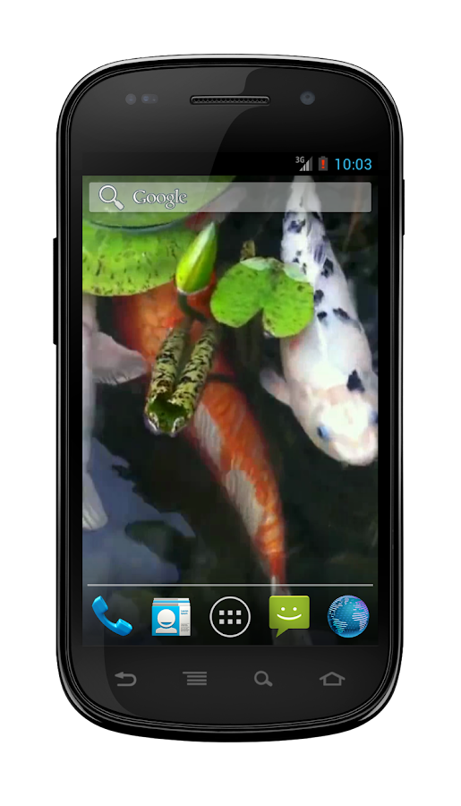 Koi Fish Pond Wallpaper - screenshot