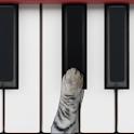 פסנתר חתולים icon
