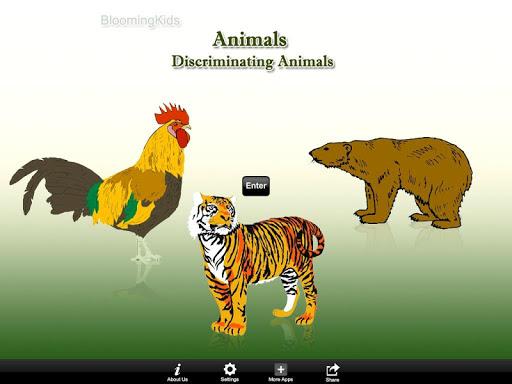 Discriminating Animals