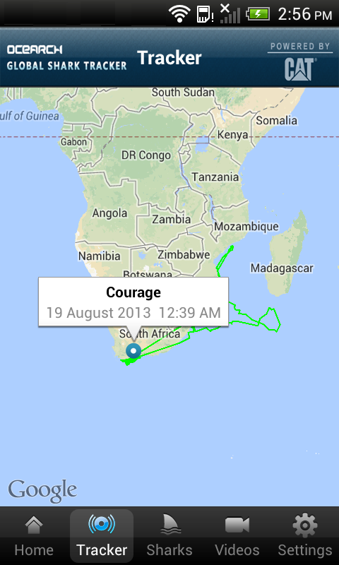 Global Shark Tracker- screenshot