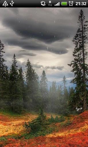 Lightning Rain Storm :