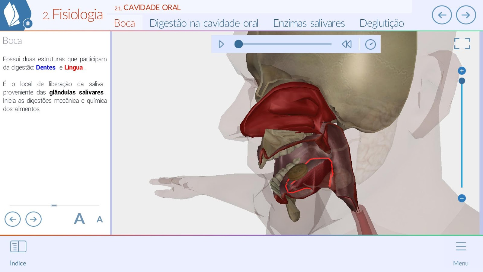 Sistemas do Corpo Humano 3D: captura de tela