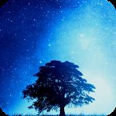 Night HD Live Wallpaper