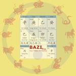 Bazi Pro (Chinese Astrology)