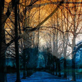 Alley in Colors by Nat Bolfan-Stosic - City,  Street & Park  City Parks ( park, colors, reflections, city, alley )