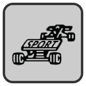 LCD Rally Game icon