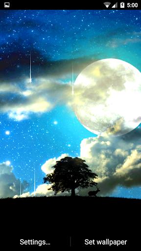 晚上自然動畫