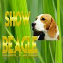 Show Beagle .com icon