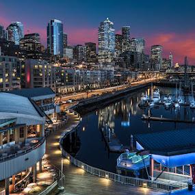 Seattle Skyline by George Herbert - City,  Street & Park  Night