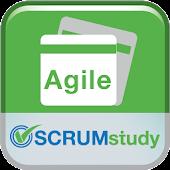 SCRUMstudy Agile Flashcard