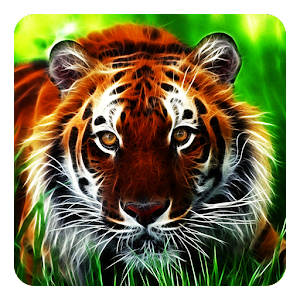 tigers wallpaper