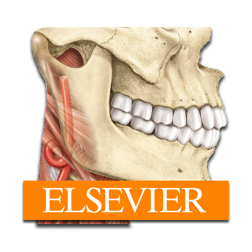 Sobotta Anatomy Atlas 2.9.4 (Full Unlocked) APK for Android