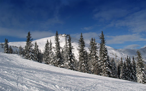 Snowfall Scene Live Wallpaper