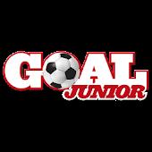 Goal Junior