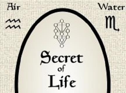 生命的秘密