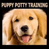 Puppy Potty Training 101