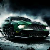 Race Car eXPERIAnce Theme