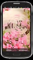 Screenshot of Sobhana Allah Ripple LWP