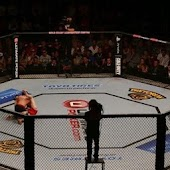MMA Fighting Live