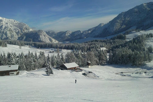 Alp Ski Jigsaw Puzzle