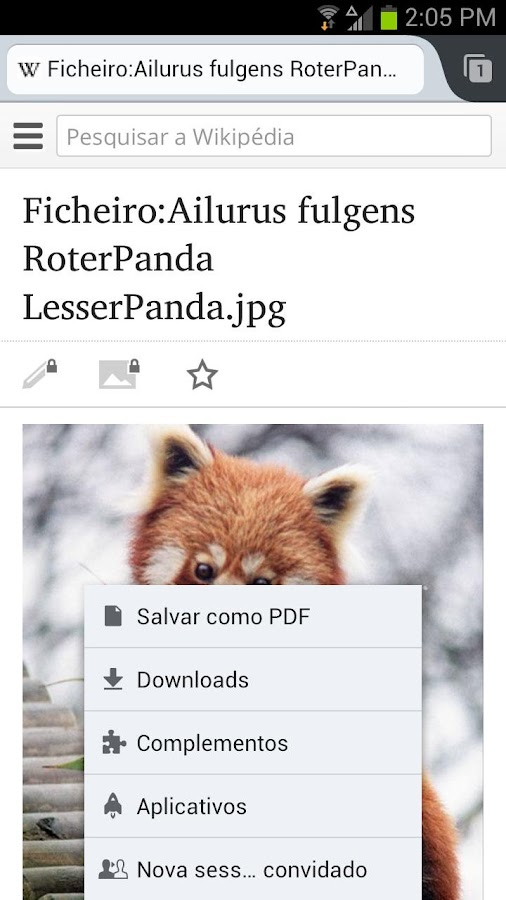 Firefox navegador web - screenshot